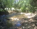 Ovens River at Harrietville