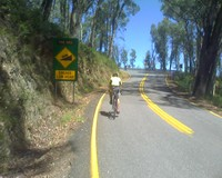 the meg mt hotham